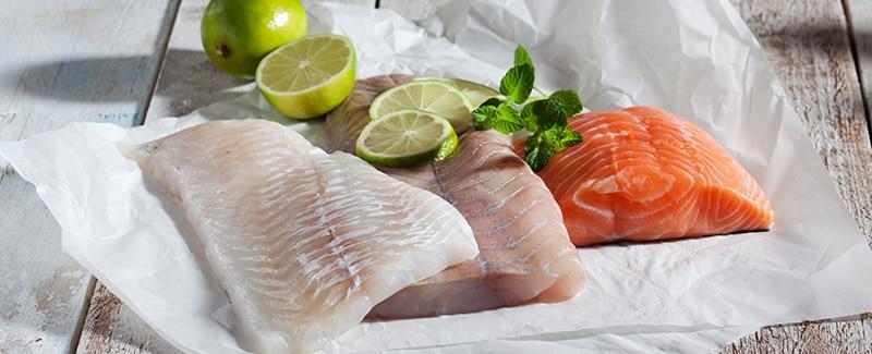 Schlau und schlank dank Fisch?