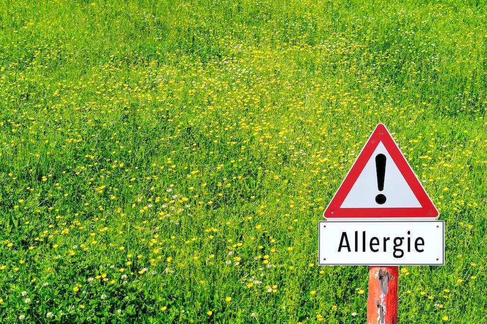 Allergien natürlich bekämpfen – die 4 effektivsten Tipps
